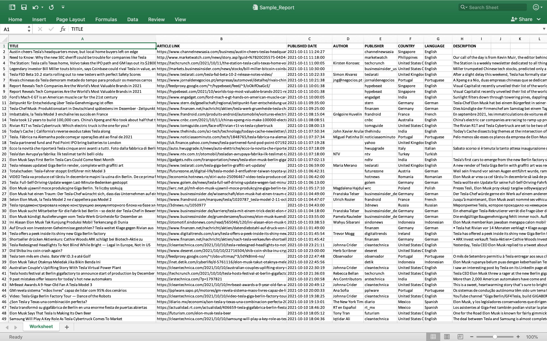 Newsdata Excel file